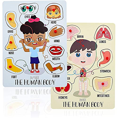 Educational Wood Peg Anatomy Puzzle Game for Kids, Human Body Parts (2 Pack)