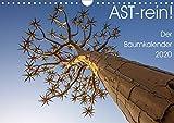 Astrein! - Der Baumkalender 2020 (Wandkalender 2020 DIN A4 quer): Bäume aus verschiedenen Perspektiven in 12 hochwertigen Fotografien (Monatskalender, 14 Seiten ) (CALVENDO Natur)