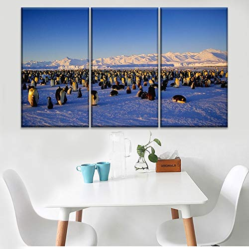 RHBNVR canvas schilderij muurkunst canvas gedrukt dier poster 3 stuks pinguïn hemel en aarde foto modern huis decoratief kunstwerk schilderij (zonder lijst)