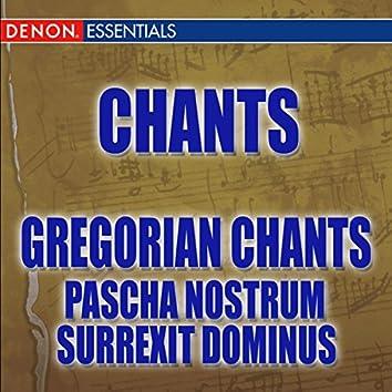 Pascha Nostrum - Surrexit Dominus