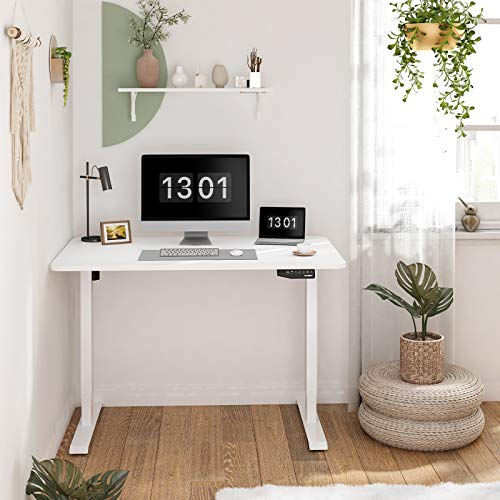 Flexispot EN1 Electric White Stand Up Desk Workstation with 48 x 30 Inches Whole-Piece Desktop Ergonomic Memory Controller Adjustable Height Standing Desk Primo(White Frame + 48