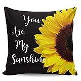 Winter Rangers Fundas de almohada decorativas, diseño de girasol de granja que eres mi sol, color negro, ultra suave, funda de cojín cuadrada cómoda para sofá dormitorio, 66 x 66 cm