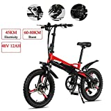TTW Bicicleta eléctrica Plegable 20 * 2.5 Pulgadas...