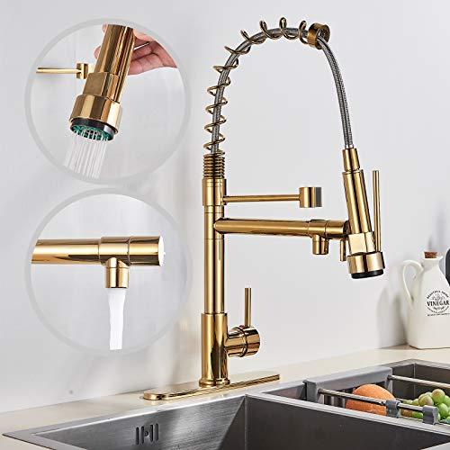 Rozin Grifo de cocina dorado con cuerpo de latón, 360 grados, caño giratorio y dispositivo de pulverización, montaje en la cubierta, incluye accesorios de montaje