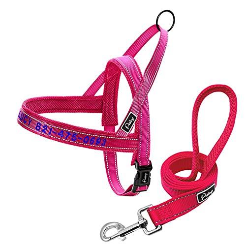 FANJIA Arnés de Perro Personalizado sin tirón Collar de Malla de Nailon Bordado arnés para Mascotas Chaleco Ajustable para Perros pequeños, medianos y Grandes