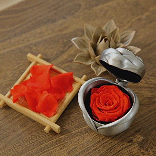 Handmade Preserved Flower Rose, Never Withered Roses, Upscale Immortal Flowers, Fresh Roses, Eernal Life Flowers for Love Ones, Gift for Valentine's Day, Anniversary, Birthday (Red Rose)
