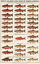 Best trout salmon and char of north america Reviews