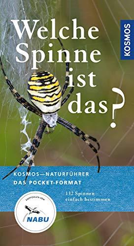 Welche Spinne ist das?: Kosmos Basic (Kosmos-Naturführer Basics)
