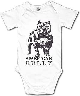 american bully baby