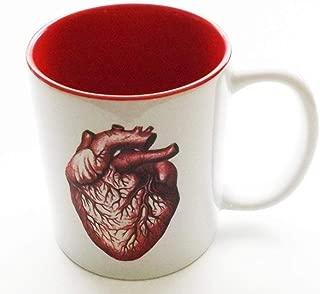 Anatomical Heart Mug Red 11 oz. Human Anatomy Cardiologist Medical Office Graduation Gift Doctor Nurse