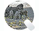 Yanteng Animal Design Cute Baby Pig Mousepad, Boar Round Mouse Pads