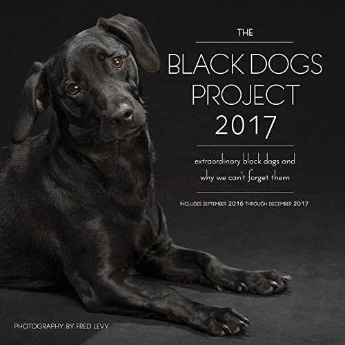 The Black Dogs Project 2017: 16-Month Calendar September 2016 through December 2017