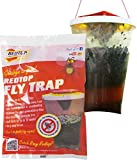 Red Top Fly Traps, Fly Trap, Red, 2 Pack