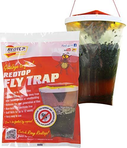 Red Top Fly Traps Trappola Trapolla per Mosche, Rosso, 2 Pezzi