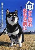 命がこぼれおちる前に―収容された犬猫の命をつなぐ人びと (感動ノンフィクションシリーズ)