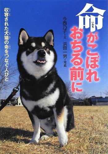 命がこぼれおちる前に―収容された犬猫の命をつなぐ人びと (感動ノンフィクションシリーズ)の詳細を見る