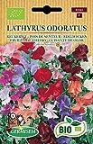 Germisem Orgánica Lathyrus Odoratus Semillas de Guisantes Dulces 3 g