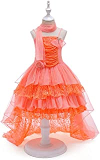 LUKEEXIN Lace Tail Princess Dress Long A Line Wedding Pageant Dresses Kids Tulle Party Gown