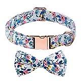 AIEX Collar de Perro con Hebilla de Pajarita Collar de Cachorro Floral Collar Suave Ajustable para Perros Pequeño Mediano Grande y Gatos de Tamaño Barro Mascotas (S)