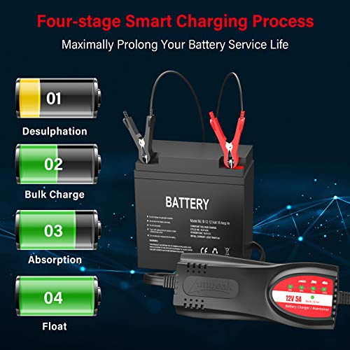 This smart battery charger can be used with any lead-acid batteries, car battery
