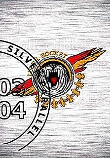 (CI) Lulea Hockey, Checklist Hockey Card 2003-04 Swedish Elitset Silver 140 Lulea Hockey, Checklist