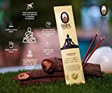 Shunya India Mosquito Repellent and Meditation Incense Sticks (Pack of 12)
