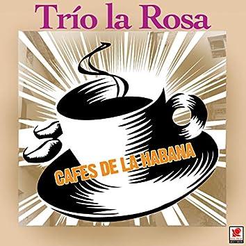 Cafés De La Habana