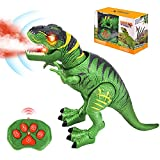 Remote Control Dinosaur Toys for Kids - Realistic Dino Toy Figure - LED Light Up Walking and Roaring T-Rex Model with Glowing Eyes Projection Spray Function - Toddlers Boys Girls Gifts Age 3+