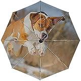 Paraguas automático Perro Amigo Correr Pelota Viajar Conveniente A Prueba de Viento Impermeable Plegable Automático Abrir Cerrar