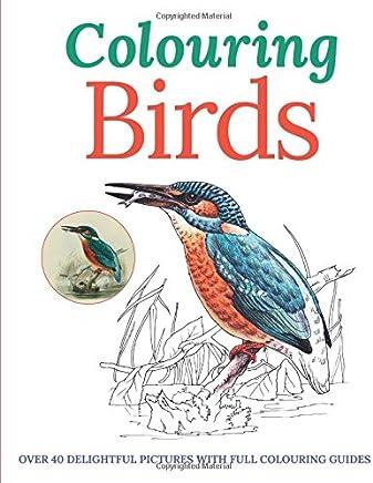 Colouring Birds (Colouring Books)