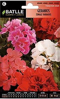 comprar comparacion Semillas de Flores - Geranios Zonale variados - Batlle