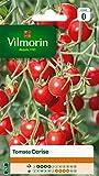 Vilmorin 3974040 Tomate Cerise, Rouge, 90 x 2 x 160 cm
