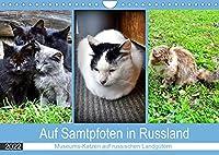 Auf Samtpfoten in Russland - Museums-Katzen auf russischen Landguetern (Wandkalender 2022 DIN A4 quer): Katzen auf den ehemaligen Landguetern russischer Dichter (Monatskalender, 14 Seiten )