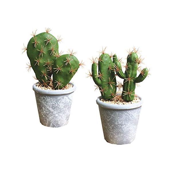 Fycooler Artificial Succulent Plants Faux Cactus Decorative Faux Succulents Potted Fake Cactus Cacti with Gray Pots Rock Sand Included Artificial Faux Cactus for Bathroom/Home Decor House Decorations