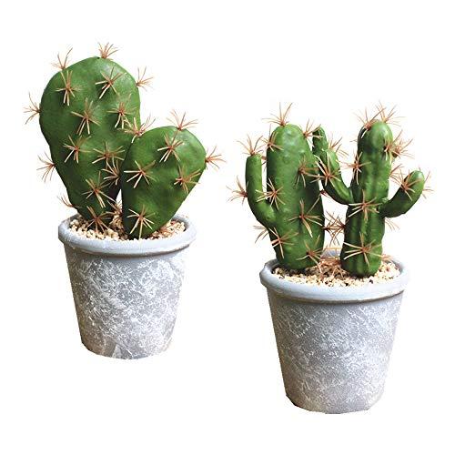Fycooler Plantas suculentas artificiales en macetas Cactus falso Suculentas falsas decorativas Cactus falso Cactus con roca y arena Falso Cactus Artificial Para decoraciones de decoración del hogar