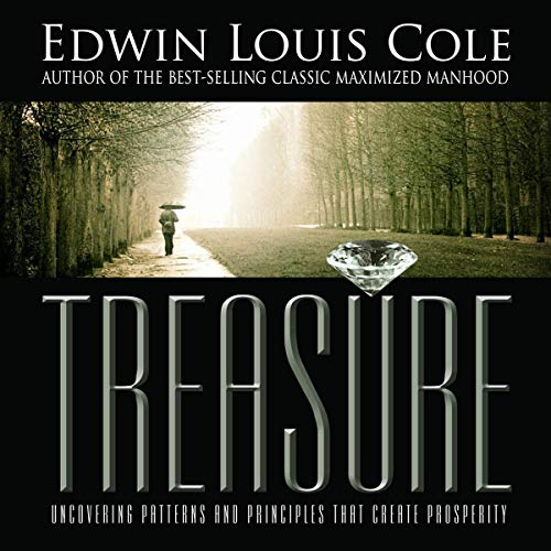 Treasure: Uncovering Patterns & Principles That Create Prosperity audiobook cover art