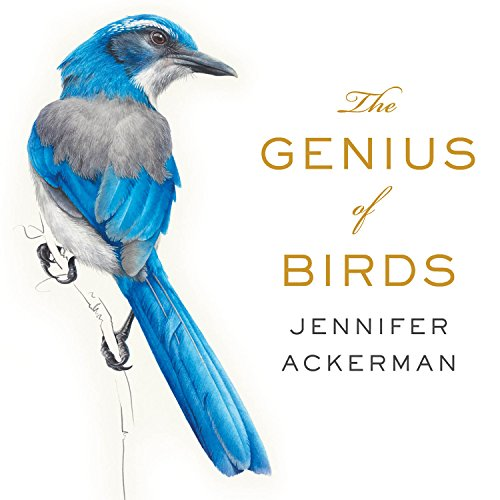 The Genius of Birds audiobook cover art