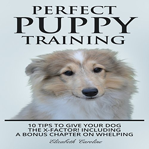 Perfect Puppy Training: 10 Tips to Give Your Dog the X-Factor! audiobook cover art