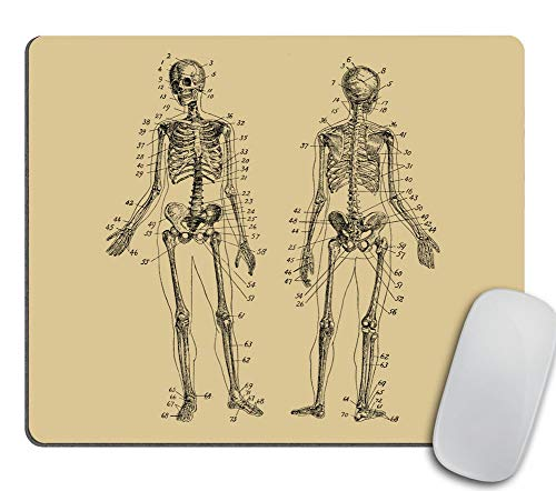 Human Skeleton Mouse Pad Rectangle - Human Anatomy Computer or Office Work Station Decor