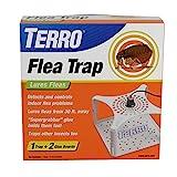 Best Flea Bombs - Terro T230 Refillable Flea Trap, White Review