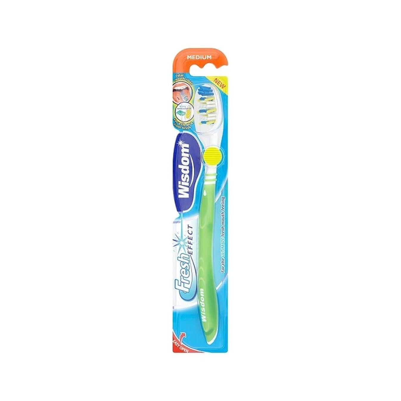 区画安らぎ進行中[Wisdom ] 10の知恵フレッシュ効果メディア歯ブラシパック - Wisdom Fresh Effect Medium Toothbrush Pack of 10 [並行輸入品]