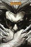 GB Eye 61x 91,5cm Marvel Extreme Wolverine Klauen Maxi