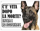 lovelytiles malinois pastore belga attenti al cane esiste la vita dopo la morte? targa cartello insegna (metallo)