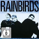 Songtexte von Rainbirds - Rainbirds