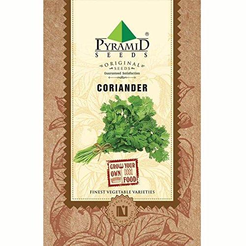 Pyramid Seeds Coriander - 100g