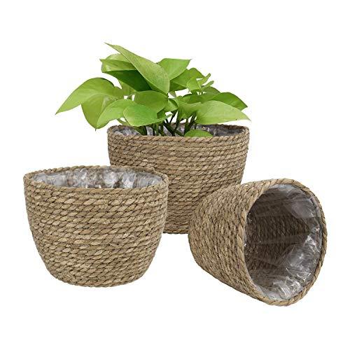 TOPSALE Seagrass Planter Basket Set of 3 Indoor Outdoor, Flower Macetas Cover, Contenedores de Plantas, Flower Basket Color Primario del CéSped