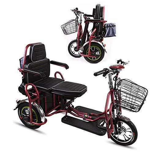 HXJZJ E-Scooter Elektro-Trike 2 Personen E-Roller 3-Rad Elektromobil eu-Zulassung 350w - Herausnehmbarer Lithium Akku - 20 Km/H, Faltbare,Erwachsene Behinderte äLteres Scooter 40km