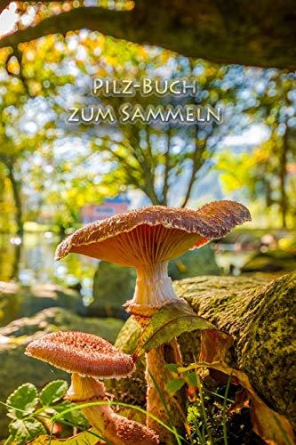 Pilz-Buch zum Sammeln: Schwammerl und Pilze - das Buch für echte Naturfreunde und Pilzsammler