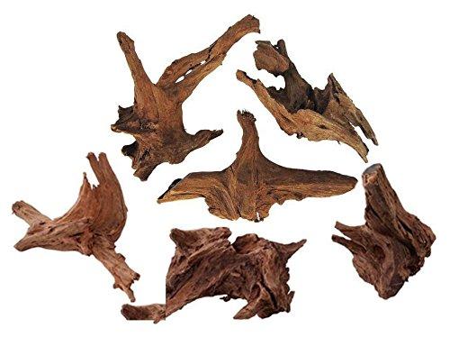TM Aquatix Bois de mangrove (x1 pièce) – Taille des racines : 20–30 cm (bois flotté IWAGUMI)
