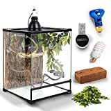 BIOTERIUM Reptile Tank   18x18x24 Inch Glass Tank for Reptiles   Terrarium Tank Starter Kit   Reptile Enclosure Combo Includes Cork Bark Background, Deep Dome Lamp, Bulb, Thermometer, and More